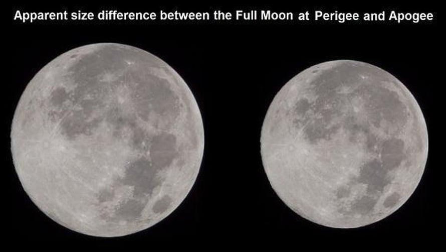 """Täysikuu vasemmalla on kuvattu lähellä Maata. Se voi olla noin 14 prosenttia suurempi kuin täysikuu, jossa Kuu on etäisimmässä pisteessä kiertäessään Maata, oikealla. Kuva: <span class=""""photographer"""">Nasa</span>"""