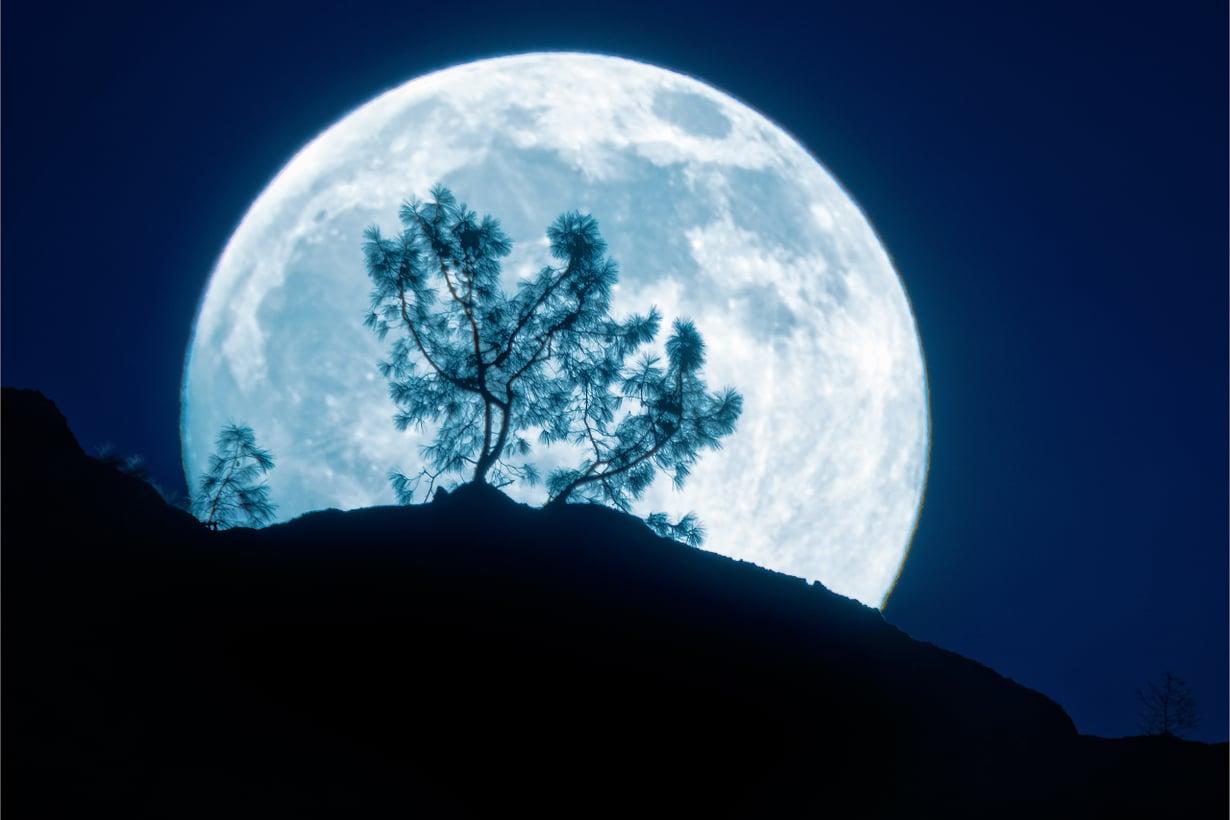 Kuun vetovoima siirtelee vesirajaa valtamerten rannoilla. Kuva: Getty Images