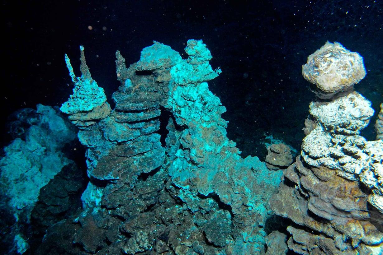 Loki löytyi Lokin linnan kuumien lähteiden liepeiltä Atlantin pohjasta. Kuva Centre for Geobiology, Bergen, Norway, R.B. Pedersen