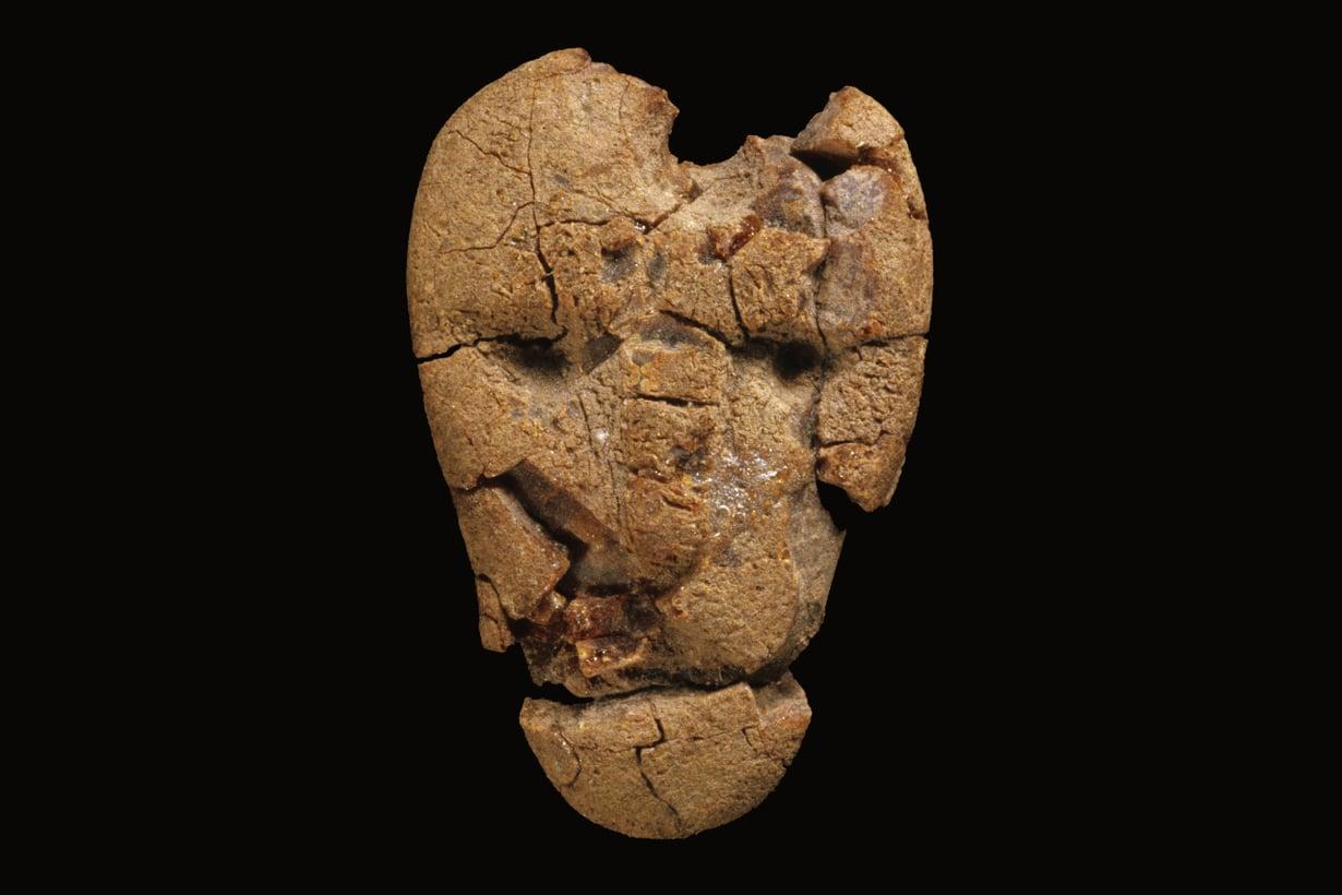 """""""Liedon äijä"""" löytyi kivikautisesta haudasta Kukkarkoskelta. Ihmiskasvoisia meripihkaveistoksia tunnetaan Suomesta vain muutamia. Kuva: Museovirasto"""