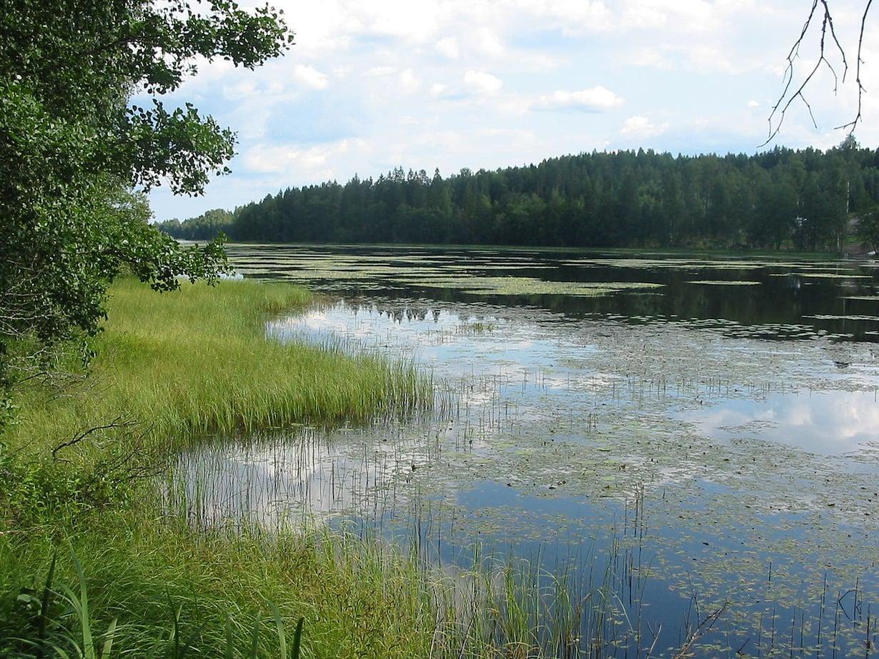 Kuva: Urjanhai / Wikimedia Commons