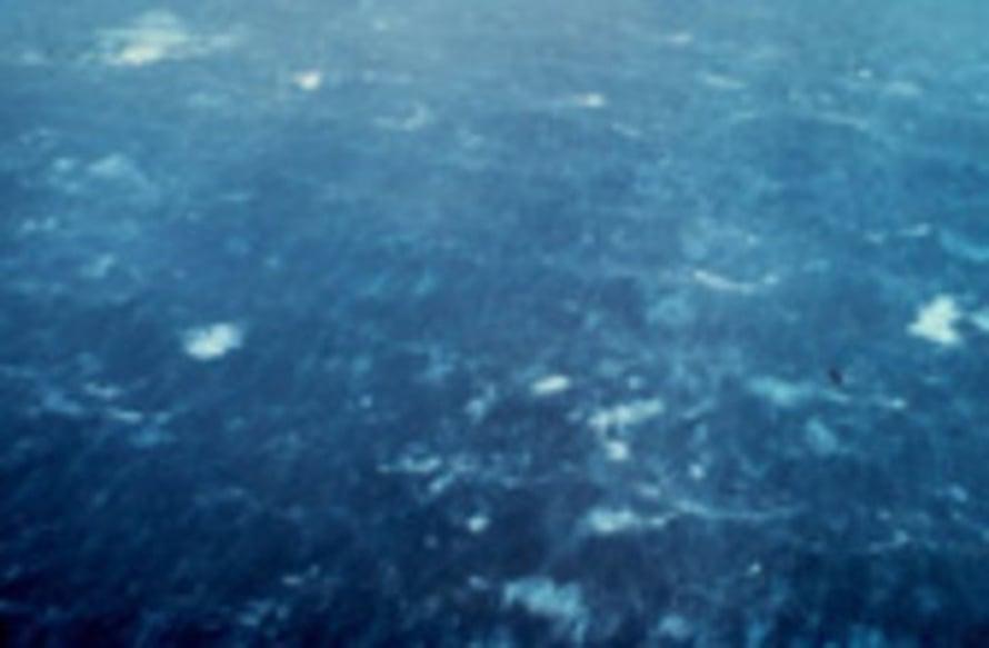 """Kuva: <span class=""""photographer"""">NOAA</span>"""