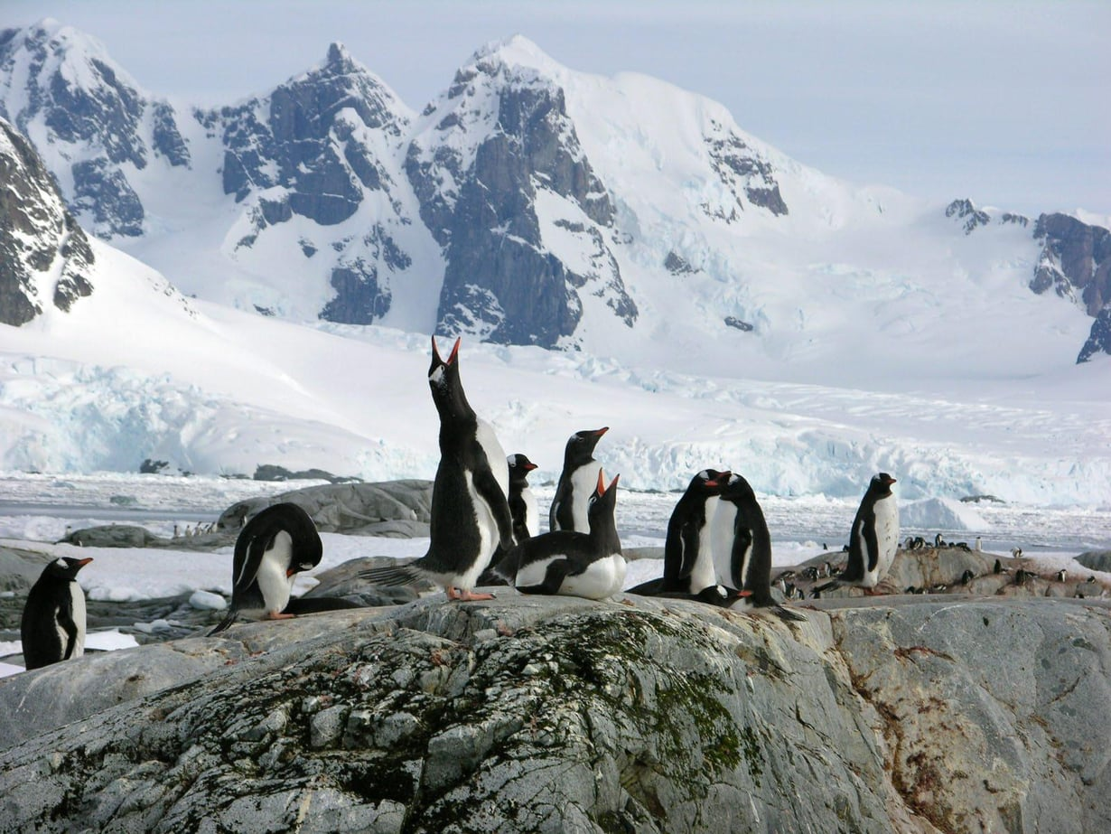 Korkea ja vuoristoinen Etelämanner lämpenee hitaammin kuin lättänä pohjoinen napa-alue. Kuva: Hannu Pöppönen
