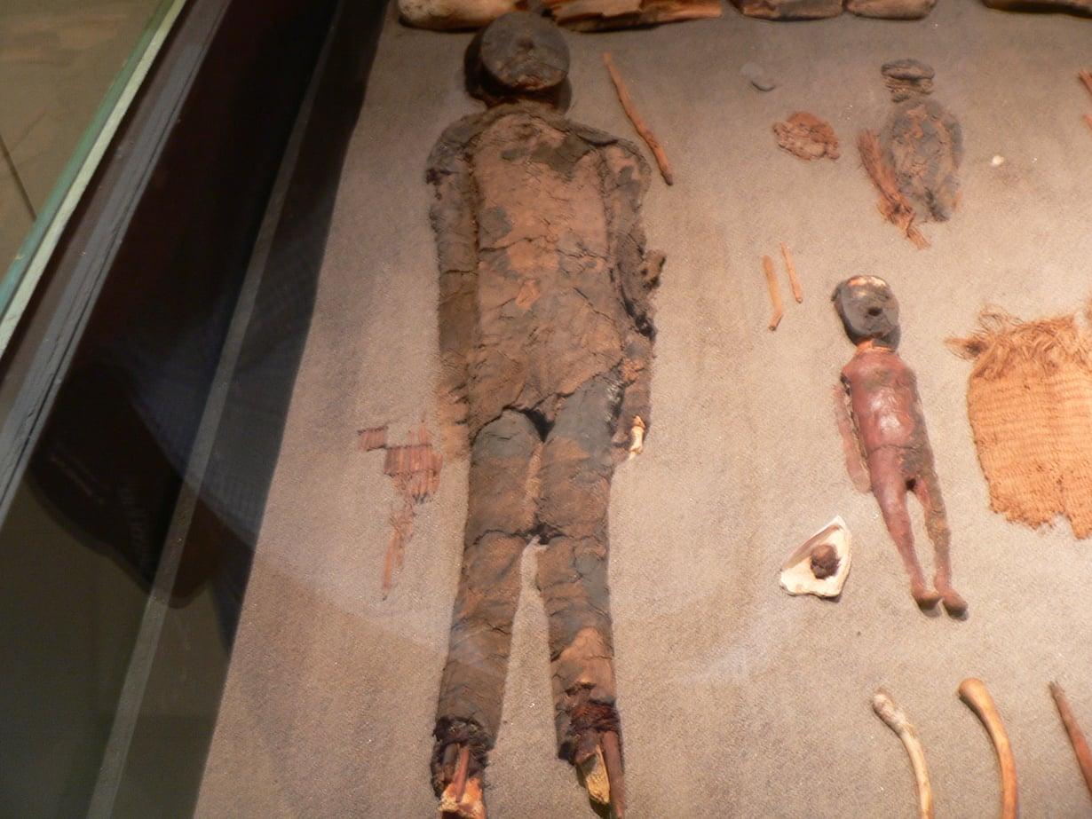 Chinchorron kulttuurin muumioita on kerätty muun muassa Chilen Aricassa sijaitsevaan museoon, mutta niitä on yhä paljon myös Atacaman autiomaassa. Kuva: Wikimedia Commons
