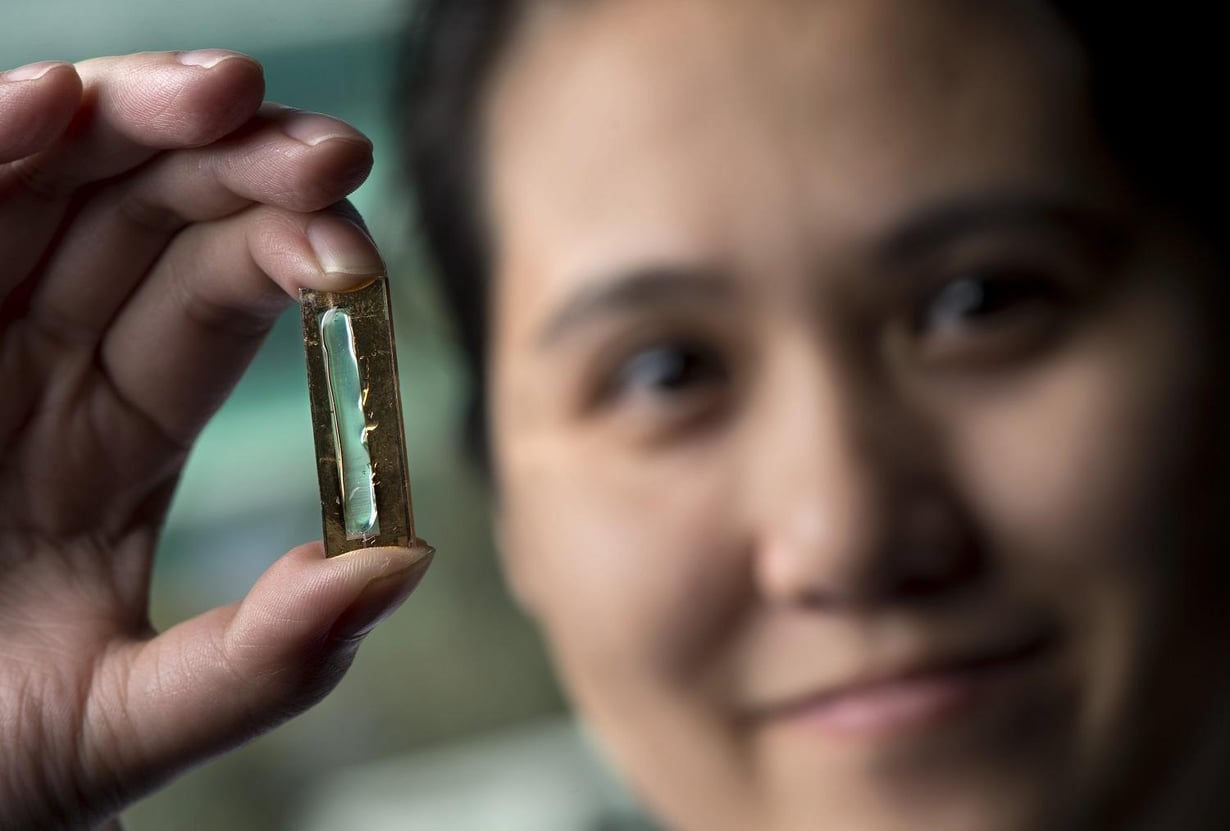 Kultananojohtimista ja geelistä saa satojatuhansia latauksia kestävän akun, huomasi Mya Le Thai. Kuva: Steve Zylius