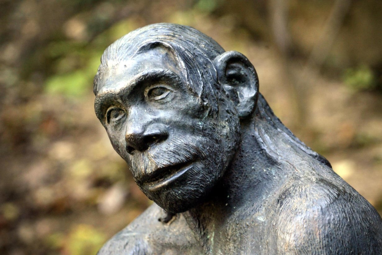 Kuvanveistäjän tulkinta neandertalinihmisestä. Kuva: Juhani Niiranen
