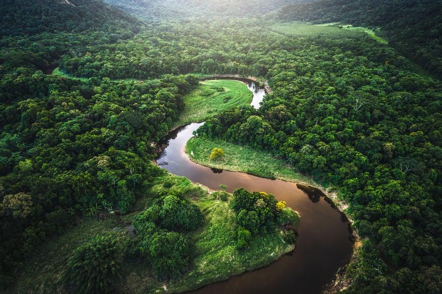"""Amazonian ekosysteemi tarvitaan hiilinieluksi. Kuva: <span class=""""photographer"""">Getty Images</span>"""