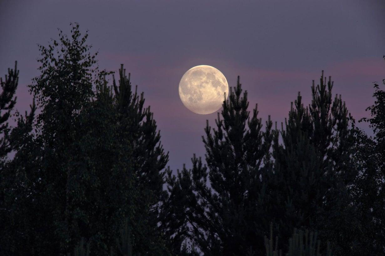 Täysikuu on tänään komea, jos näkymä horisonttiin vain on esteetön.