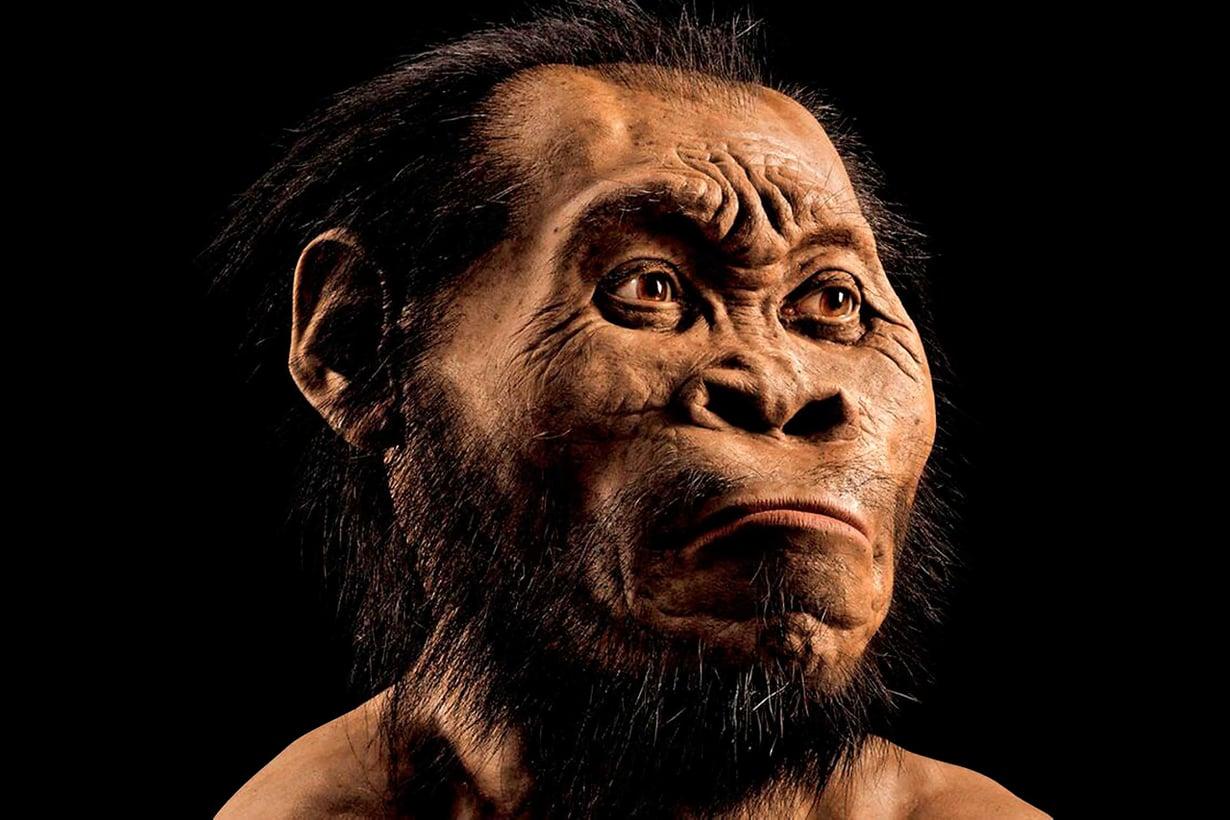 Uusi esimuotomme sai nimekseen Homo naledi löytöpaikkansa Rising star -luolan mukaan. Paikallisella kielellä tähti on naledi.