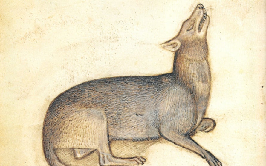 """""""Siinä paha missä mainitaan"""" tarkoitti keskiajalla paljon pelättyä sutta."""