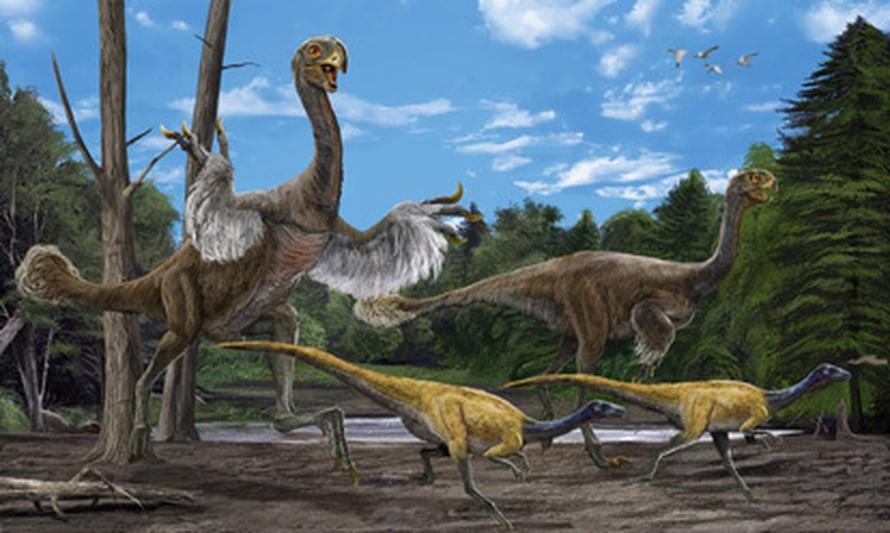 """Taitelijan näkemys gigantoraptorista pienten höyhenpeitteisten ornitomimidien seurassa. Kuva: <span class=""""photographer"""">Zhao Chuang ja Xing Lida/IVPP</span>"""