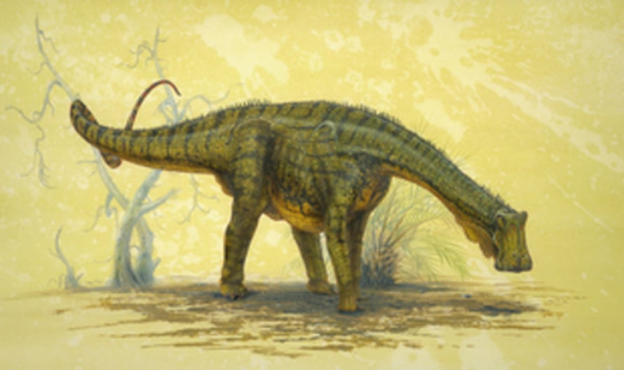 """Nigersaurus taqueti. Kuva: <span class=""""photographer"""">Art by Todd Marshall, courtesy of Project Exploration, Copyright 2007 National Geographic.</span>"""