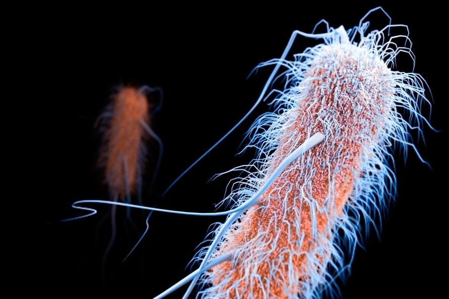 """Superbakteereja vastaan tarvitaan uusia antibiootteja. Kuva: <span class=""""photographer"""">iStock</span>"""