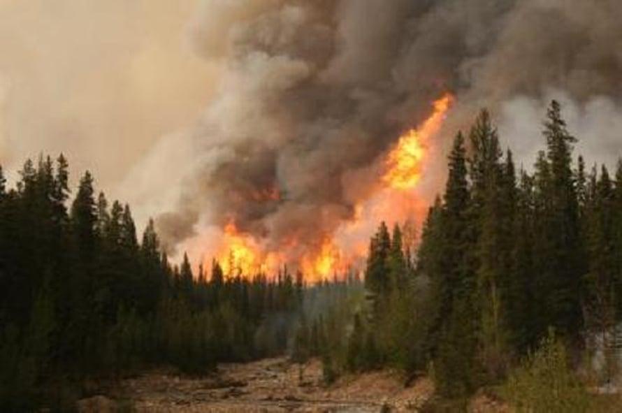 Metsäpalo Alaskassa.