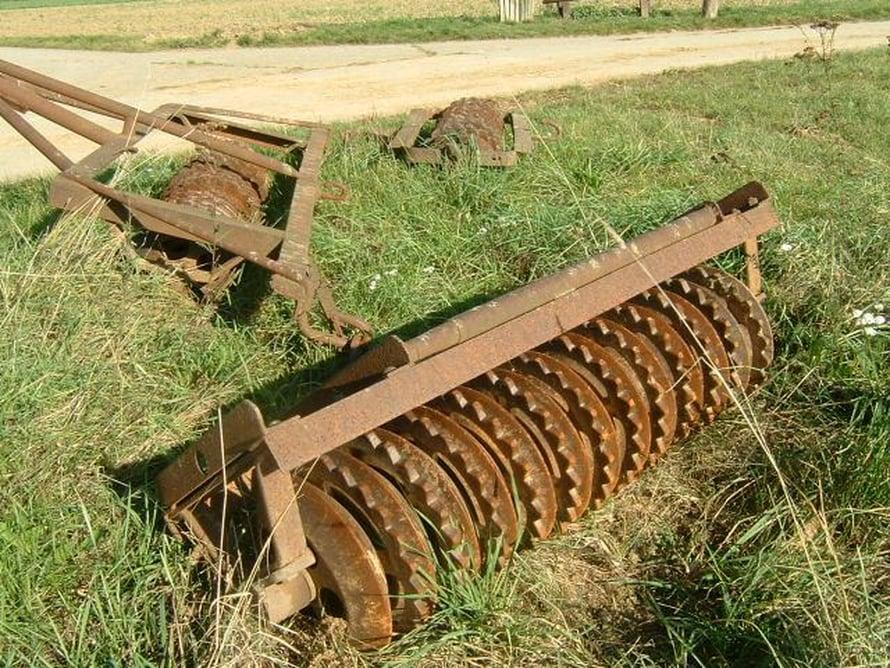 Maatalouskeksinnöt ovat levinneet itä-länsiakselilla helpommin.