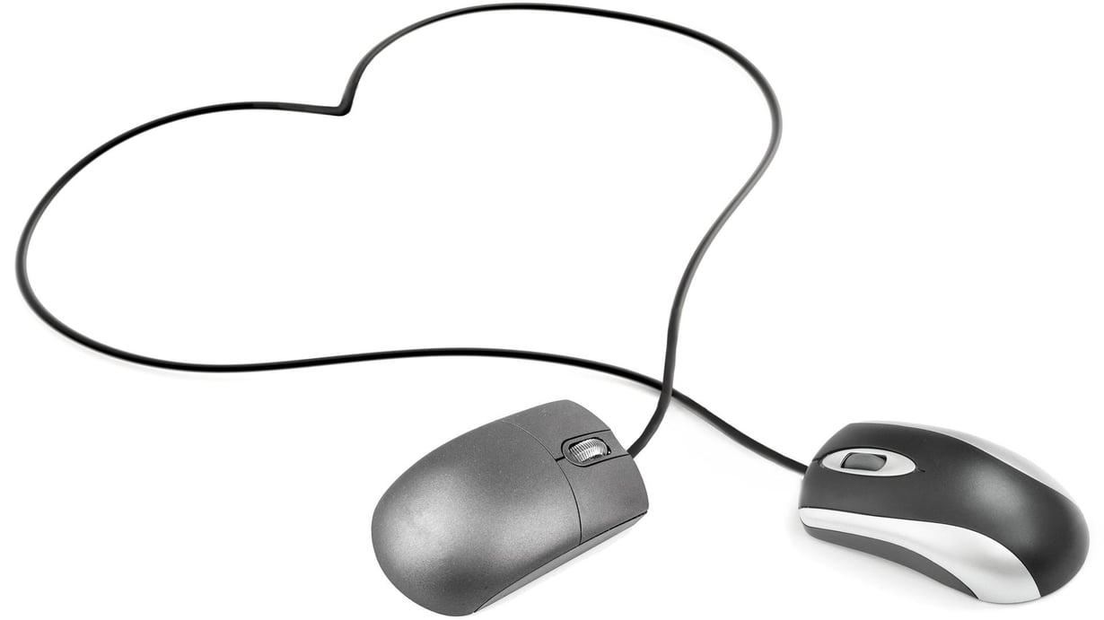 Moni hakee kumppania nettideittipalvelusta. Kuva: Kimmo Taskinen