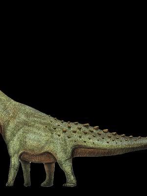 """Maailman suurimman koskaan eläneen maaeläimen titteliä kantava patagotitan kuuluu sauropodeihin, jotka tunnetaan pitkästä kaulastaan ja hännästään. Kuva: <span class=""""photographer"""">Wikimedia Commons</span>"""
