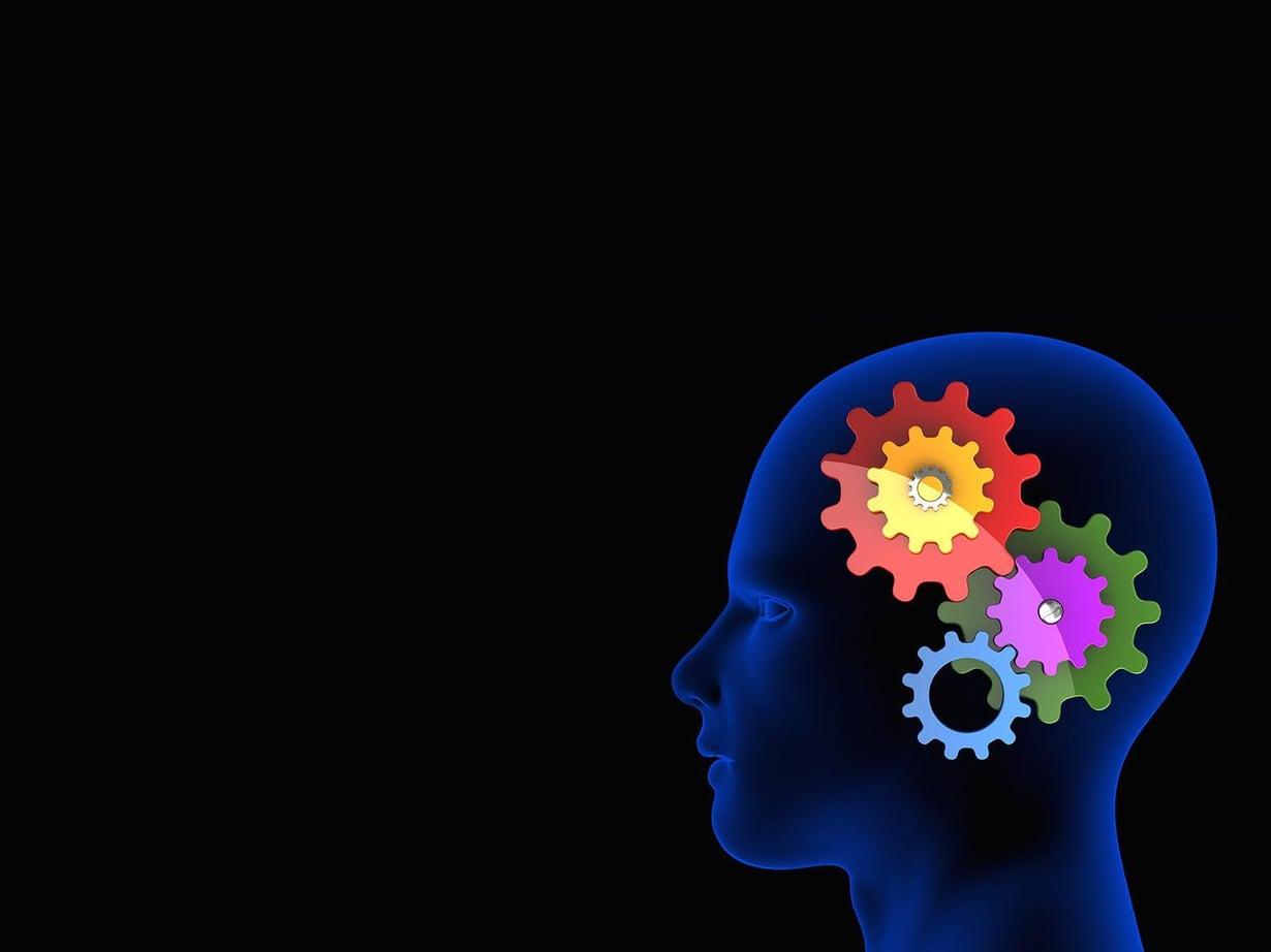 Aivoista tunnetaan alueet, jotka vilkastuvat toimeen kiihottumisesta. Kuva: Miika Holopainen