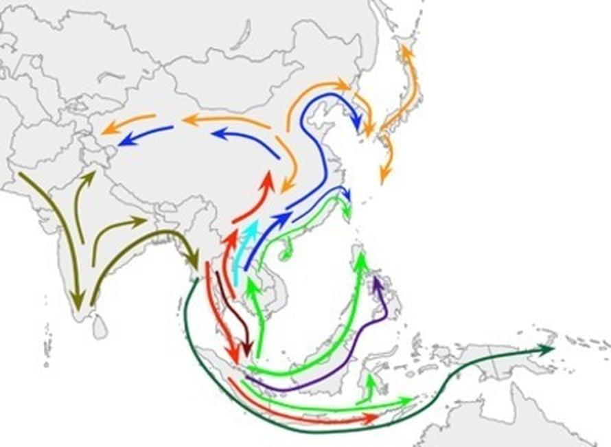 """Aasian asuttaminen alkoi mahdollisesti Intiasta ja jatkui sieltä ensin Thaimaahan ja Malesiaan, sitten kohti pohjoista. Kuva: <span class=""""photographer"""">Science / AAAS</span>"""