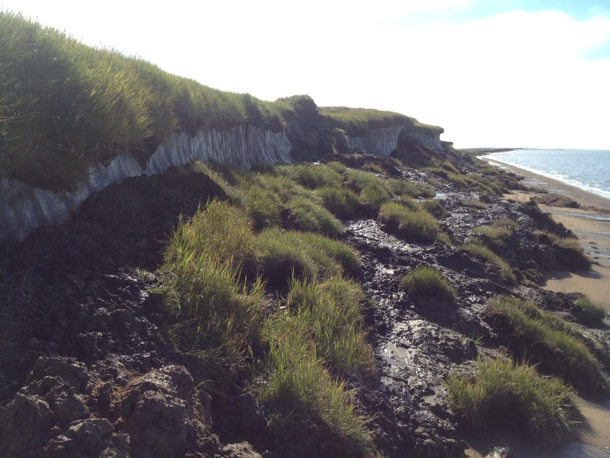 Ikiruota sulaa Alaskassa. Kuva: Wikimedia Commons