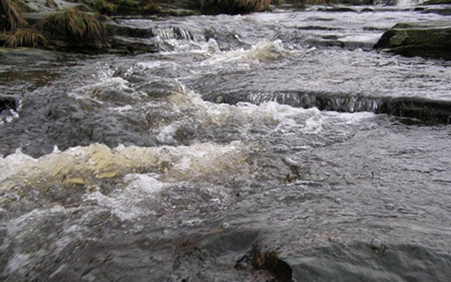 """Ruskea vesi voikin olla hyvä merkki. Kuva: <span class=""""photographer"""">Donald Monteith.</span>"""