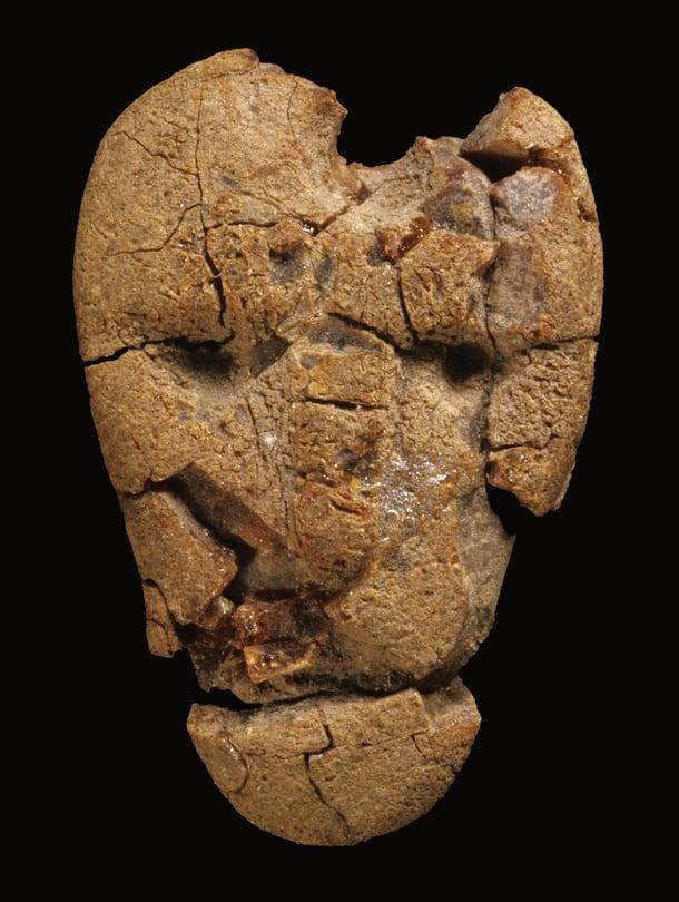 """""""Liedon äijä"""" löytyi kivikautisesta haudasta Kukkarkoskelta. Ihmiskasvoisia meripihkaveistoksia tunnetaan Suomesta vain muutamia. Kuva: <span class=""""photographer"""">Museovirasto</span>"""