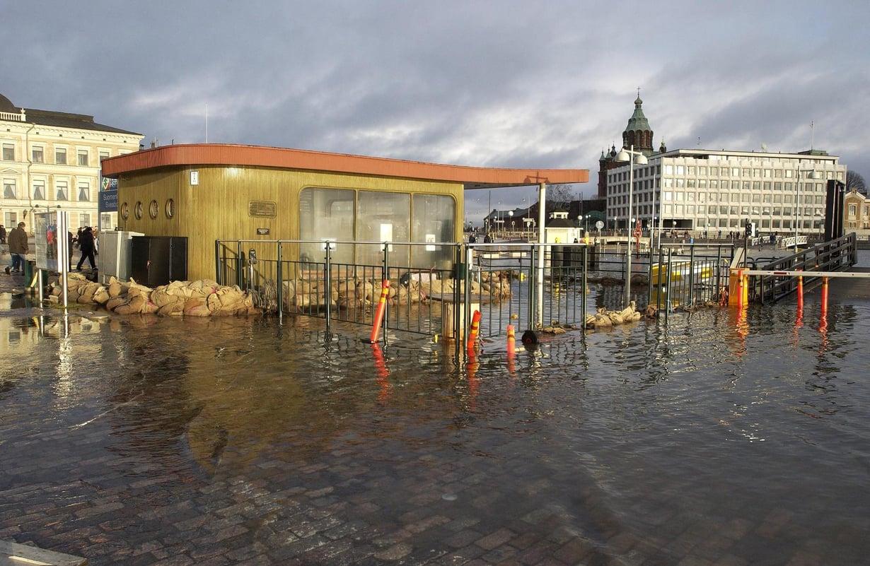 Myrsky nosti veden Helsingin Kauppatorille 2005. Kuva: Harri Vaskimo
