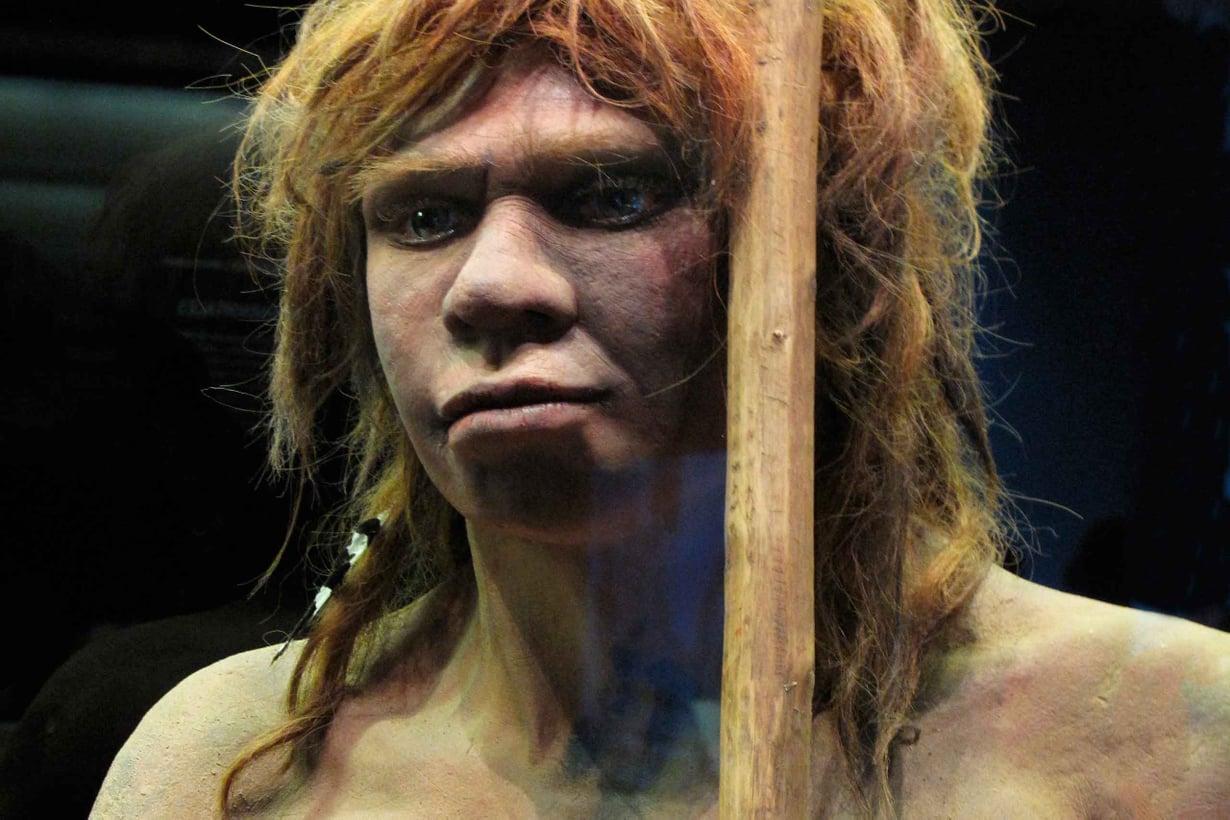 Neandertaleihin mieltyneet nykyihmiset tekivät palveluksen kaikille meille. Kuva: Getty Images