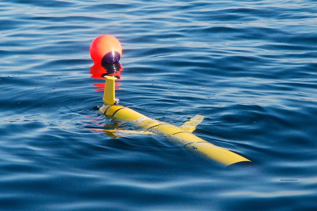 Ilmatieteen laitoksen liidin astui palvelukseen viime syksynä, mutta tekniikan sopivuutta Itämeren oloihin testattiin vastaavanlaisella robotilla jo 2013. Kuva: Kimmo Tikka / Ilmatieteen laitos