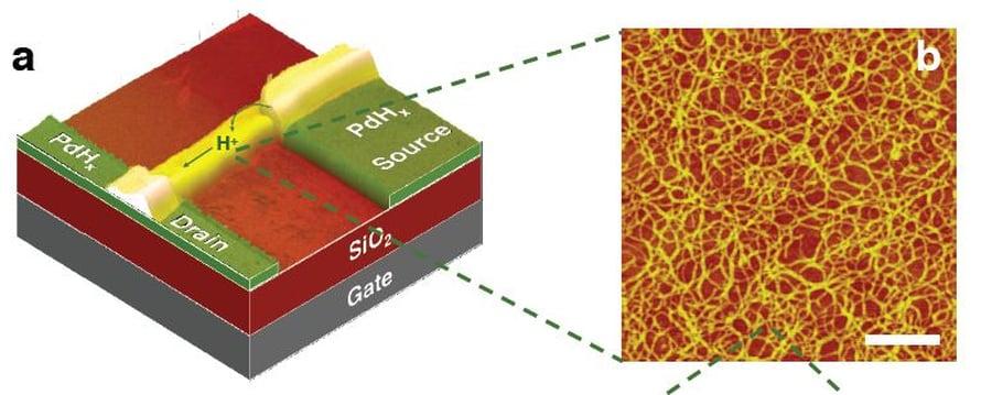 Vasemmalla kyseisen transistorin periaatekuva, oikealla suurennettu valokuva kitosaanikuiduista. Valkoinen mittasuhdepalkki on 200 nanometriä.