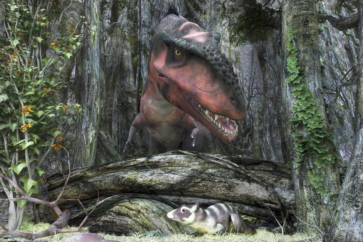 Muinaiset nisäkkäät osasivat piiloutua tyrannosaureilta. Kuva: SPL/MVPhotos