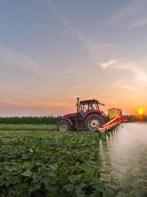 """Tuholaismyrkkyjä levitetään pelloille vähemmän mutta ne ovat myrkyllisempiä. Kuva: <span class=""""photographer"""">Shutterstock</span>"""