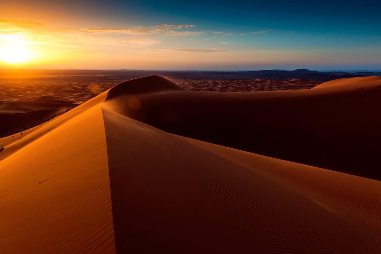 Saharan megadyynit kohoavat jopa 300 metriin, mutta jyvät eivät kelpaa betonin valmistamiseen. Kuva: Getty Images