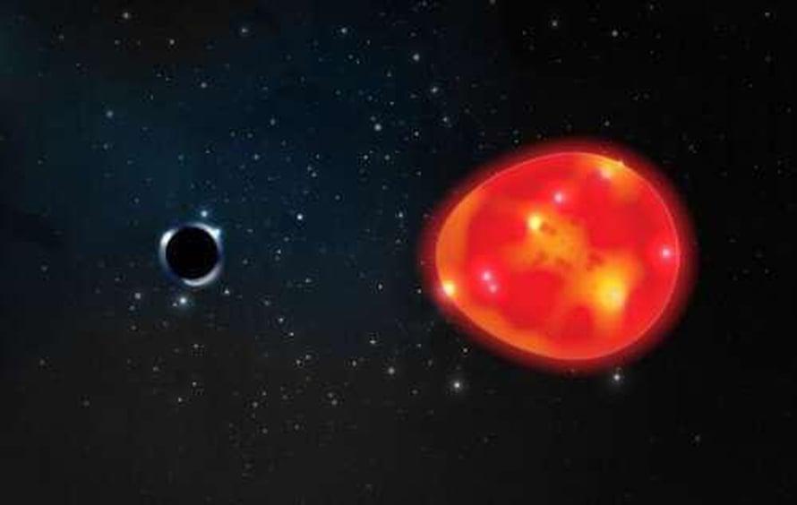 """Kuvittajan näkemys siitä, miten mustan aukon vetovoima kiskoo punaista tähteä. Kuva: <span class=""""photographer"""">Lauren Fanfer</span>"""