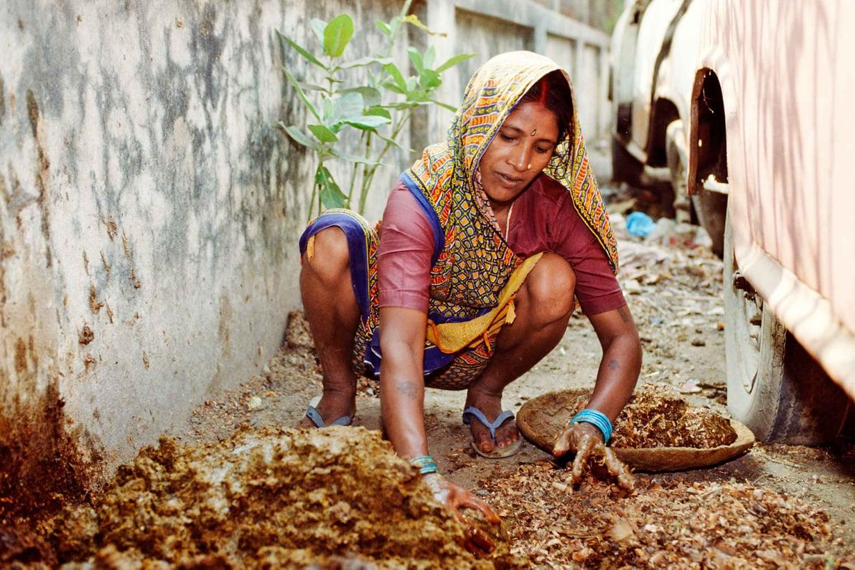 Intiassa kastijärjestelmän pohjalle syntyneille sälytetään likaisimmat työt, kuten lannan levitys. Kuva: Getty Images