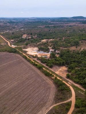 """Ilmastonmuutoksen ohella metsän kaataminen viljelyksiksi edistää Amazonin kuivumista. Kuva: <span class=""""photographer"""">Shutterstock</span>"""