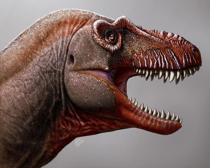 Taiteilijan näkemys kymmeniä miljoonia vuosia sitten Kanadassa eläneestä Thanatotheristes degrootorum -dinosauruksesta.