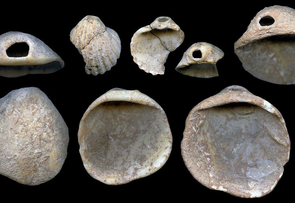 Koruina käytetyt rei'itetyt simpukankuoret ovat peräisin Avionesin luolasta. Niillä on ikää 115 000–120 000 vuotta. Kuva:  João Zilhão