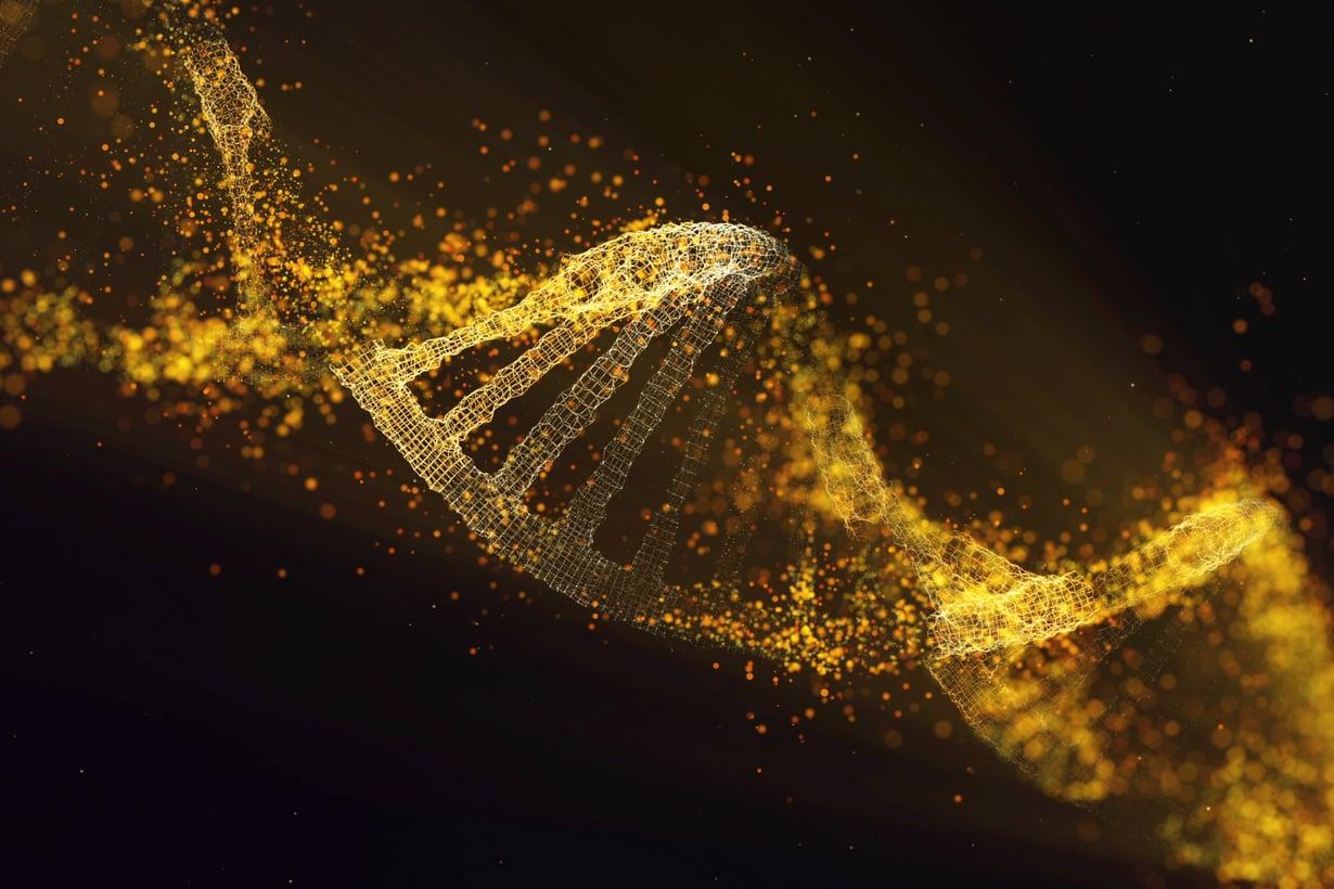 Perimä ei valehtele. Kuljetamme menneisyyttä soluissamme. Kuva: Getty Images