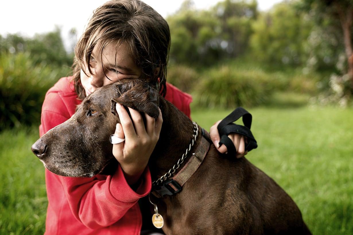 Koiran ei tarvitse olla oma tai edes tuttu voidakseen tuottaa hyvän olon. Kuva: Getty Images