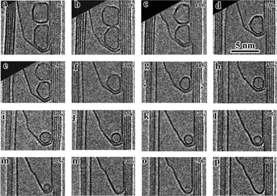 Ensin nanoputken sisään muodostuu suuria hiilipalloja. Niistä kutistuu fulleriini, jonka kuumentaminen lopulta hävittää.  Kuva Sandia