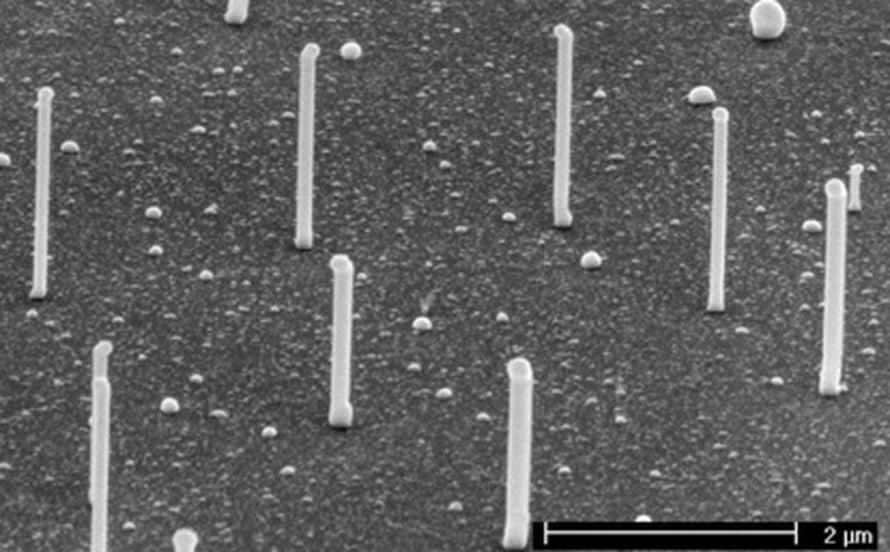"""GaP-nanojohtimia kasvaa piialustalla. Kuva: <span class=""""photographer"""">Phillips</span>"""