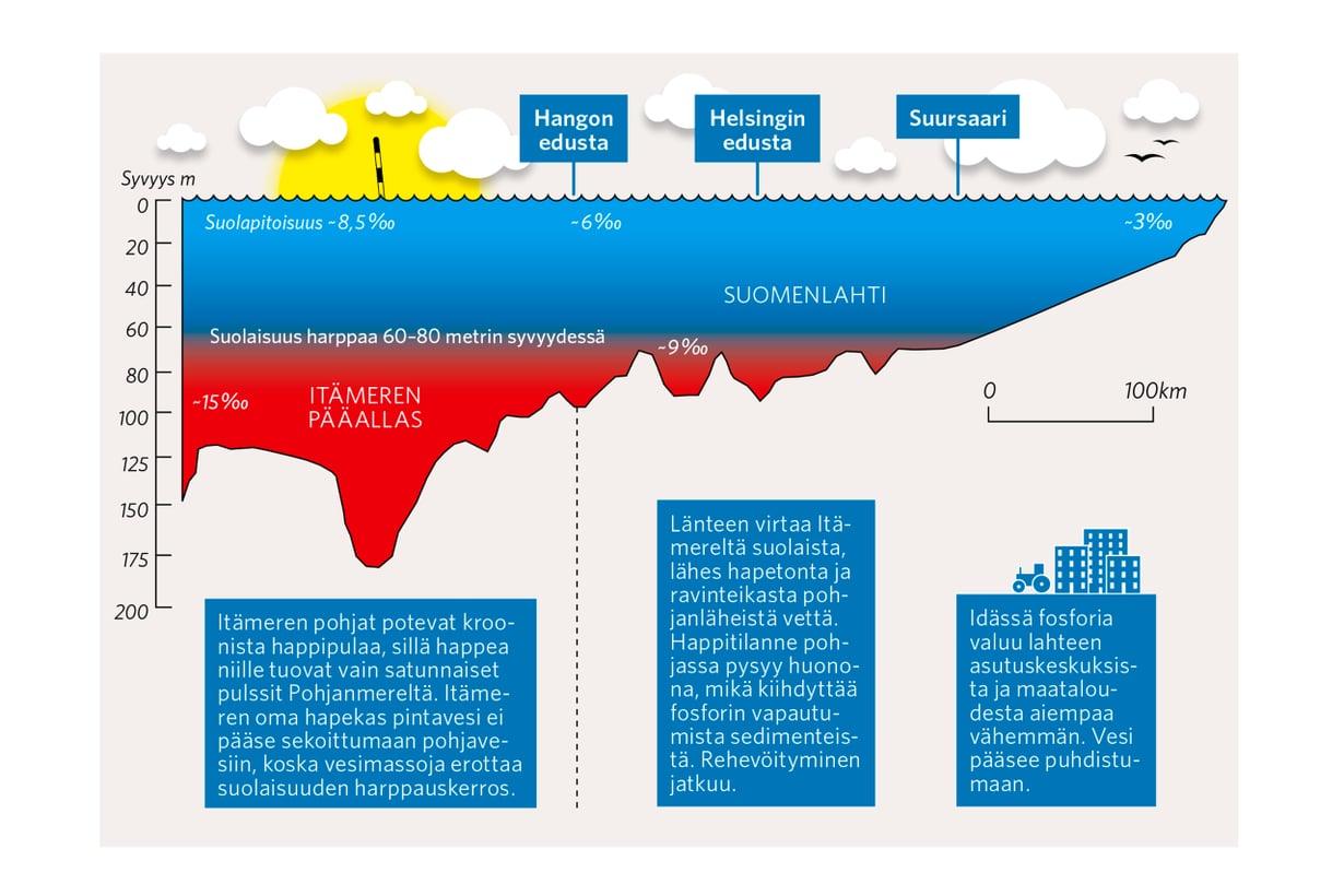 Kotilahti tervehtyy hitaasti, koska varsinaisen Itämeren vesi pitää länsipään pohjia hapettomina. Grafiikka: Pasi Salminen