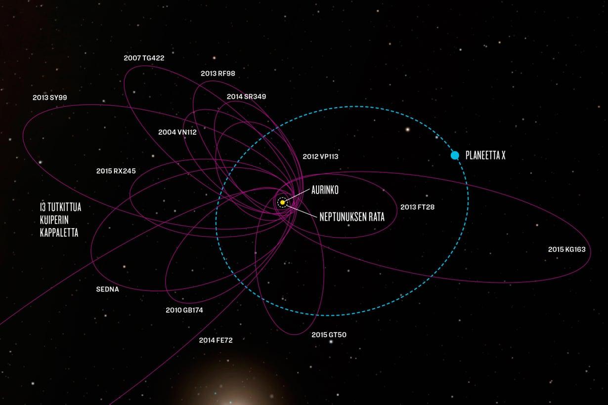 Kuiperin vyöhykkeen 13 tutkittua kappaletta kurvaavat kuin samaa rataa Auringon lähellä. Kumman kimpan voi selittää massiivinen planeetta. Grafiikka: JPL-Caltech/Robert Hurt ja Minor Planet Home Page/Andrew Lowe