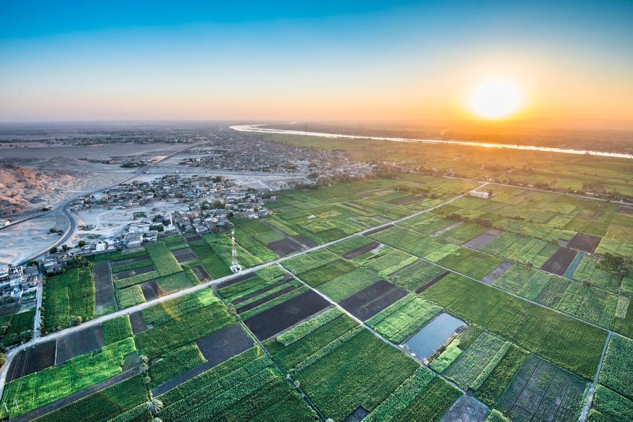 FaraoidenEgyptissä viljelymaata ravitsi tulvien tuoma hedelmällinen liete. Nyt sadot kasvavat keinolannoittein. Kuva: Getty Images