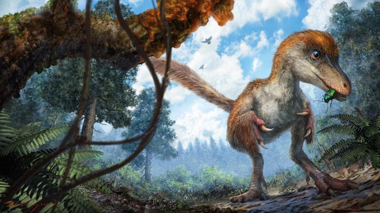 Coelurosaurus lähestyy pahaa aavistamatta pihkaesiintymää. Kuva: Chung-tat Cheung
