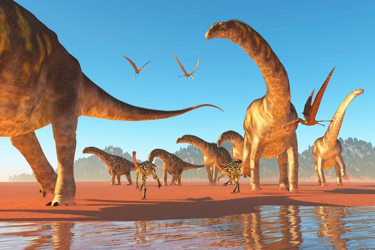 Ainakin sauropodit elivät sopivasti laumoissa. Kuva: Shutterstock