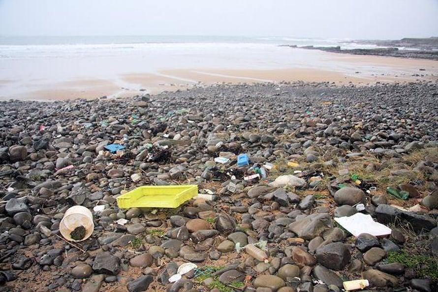 Muoviroskaa on ajelehtinut rannalle. Kuva: Bob Jones