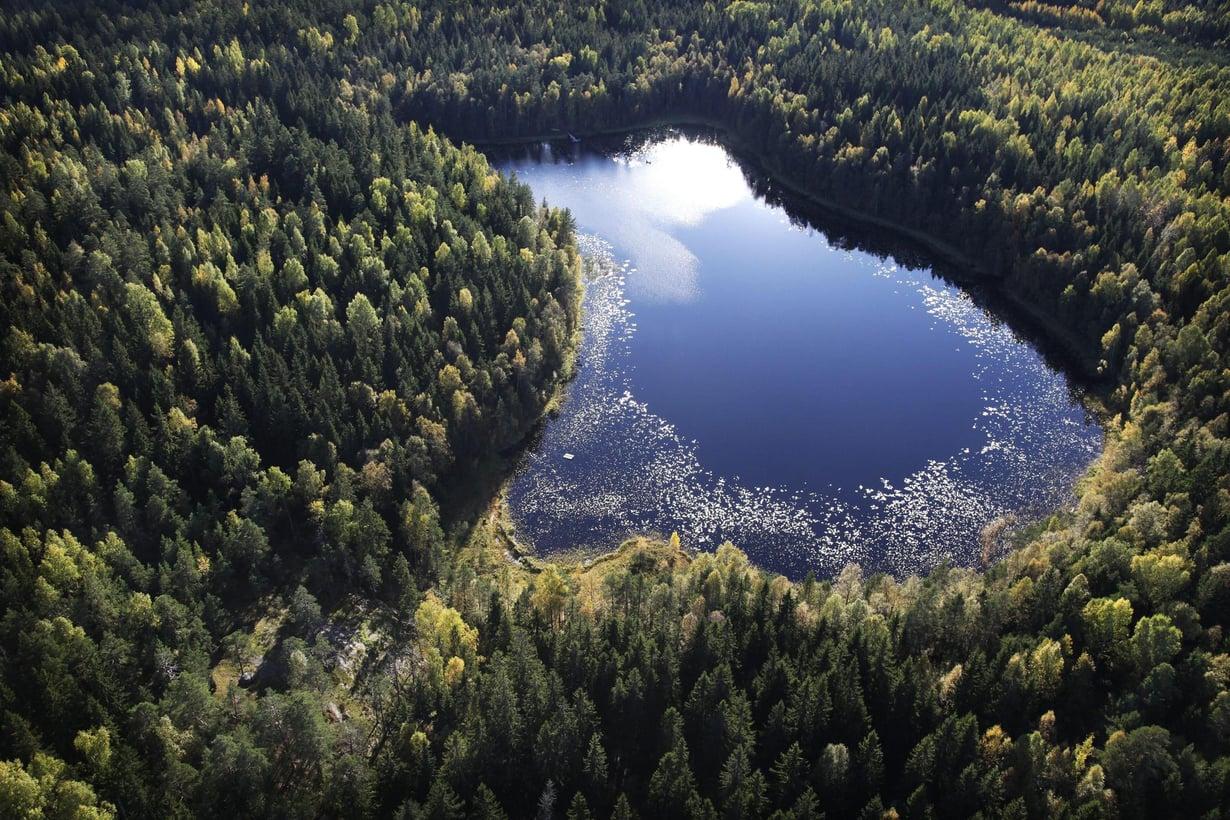 Tämän kokoisilla järvillä ei juhlittu kanadalaisessa järvivertailussa. Bisajärvi Sipoonkorvessa on kooltaan noin 400 aaria. Kuva: Christian Westerback