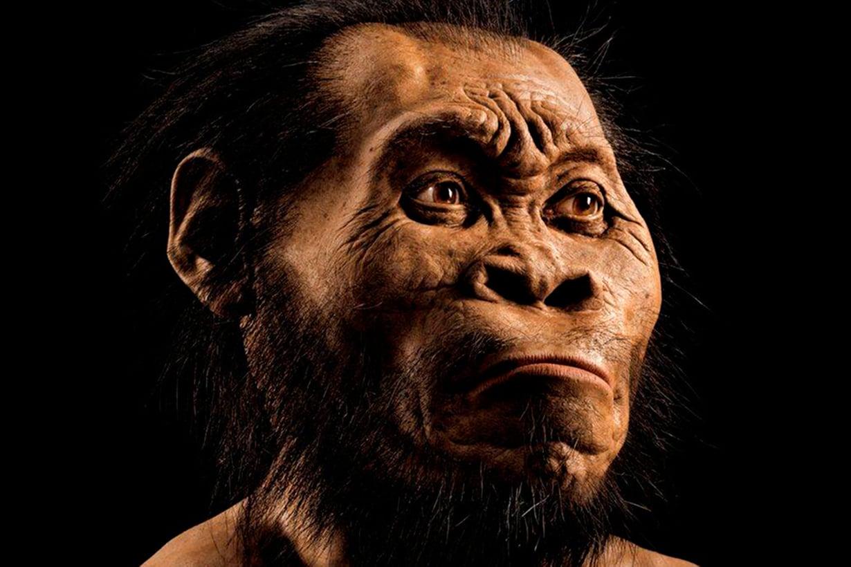 Naledi saattoi elää vain parisataatuhatta vuotta aiemmin kuin oma esiisämme heidelberginihminen ilmaantui alkukotimme maisemiin. Kuva: National Geographic / Lehtikuva